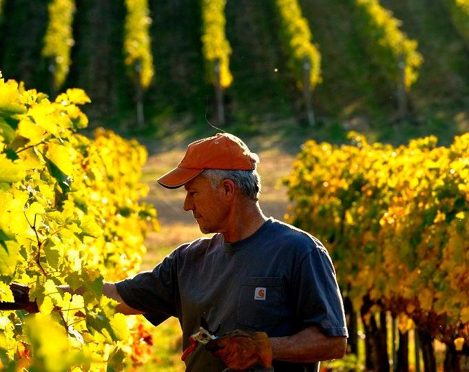 Walla Walla Valley Wine Community Mourns Loss of Executive Director